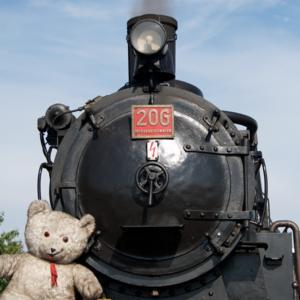 09_Teddybären_72